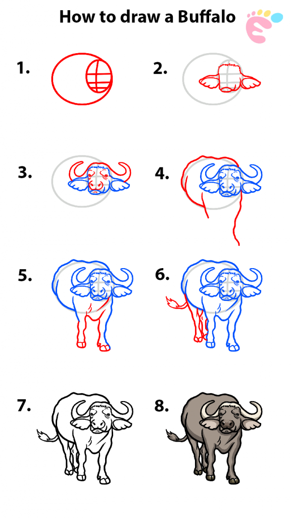 How to draw a Buffalo drawing
