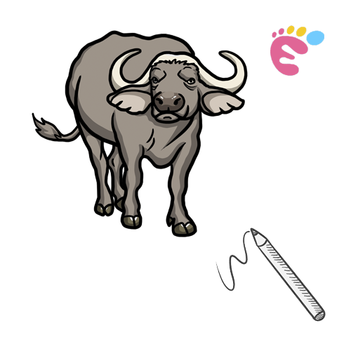 How to draw a Buffalo drawing icon
