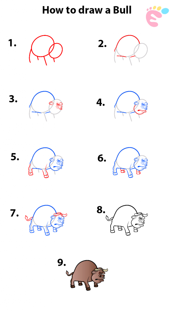 How to draw a Bull drawing