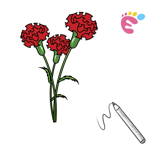 How to draw a Carnation drawing icon