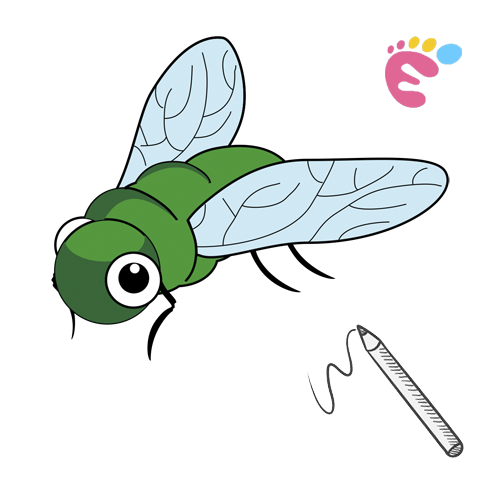 How to draw a Fly drawing icon