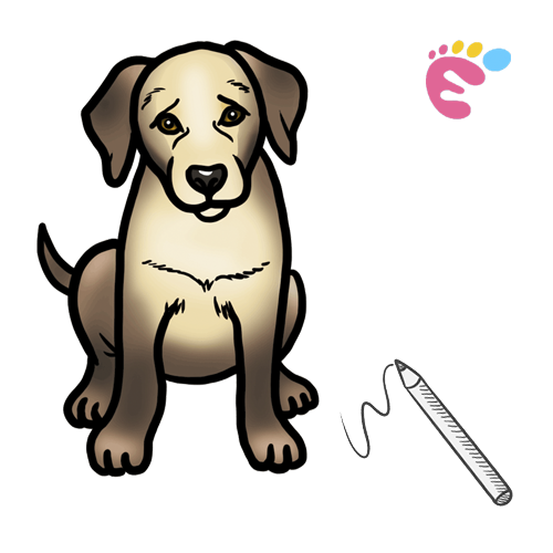 How to draw a Golden retriever drawing icon