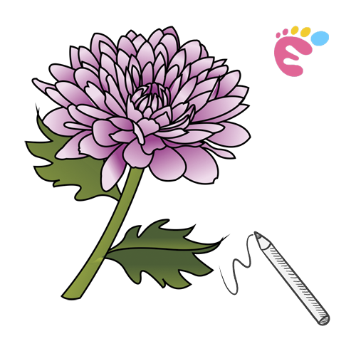 How to draw a Peony drawing icon