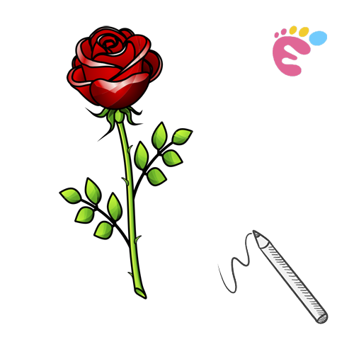 How to draw a Rose line drawing icon