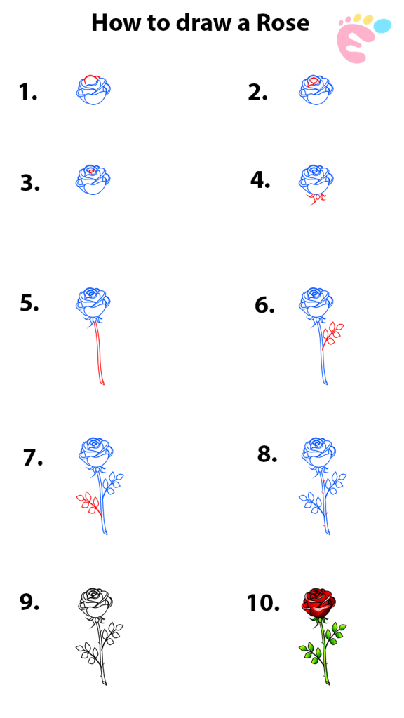How to draw a Rose line drawing