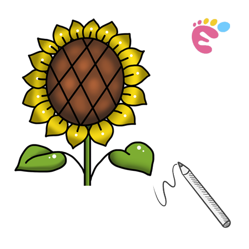 How to draw a Sunflower line drawing icon